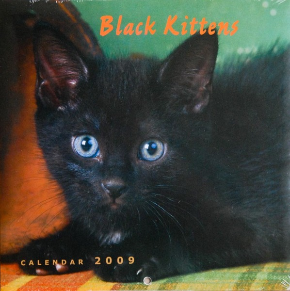 Black Kittens calendar - cover photo