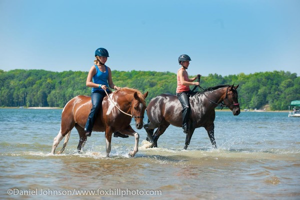 Young women out swimming their horses