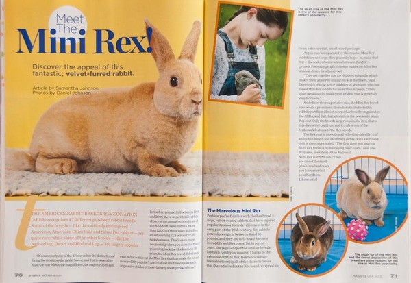2013 Rabbits USA article on Mini Rex and all photos.