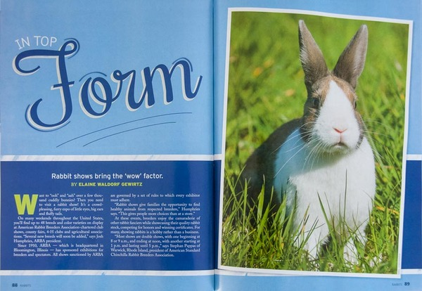 """Rabbits"" magazine, interior photos"