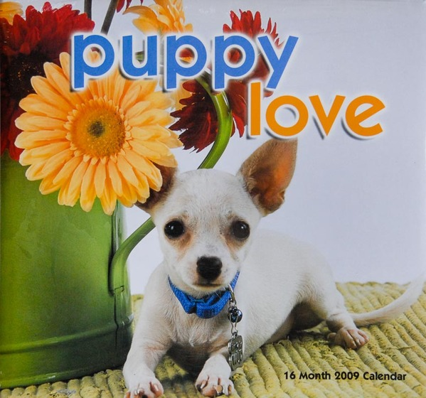 Puppy Love calendar - cover photo