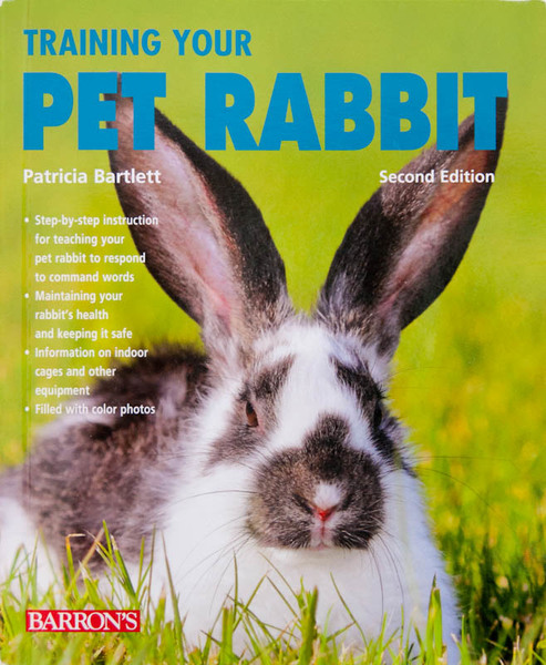 Training Your Pet Rabbit - Cover photo