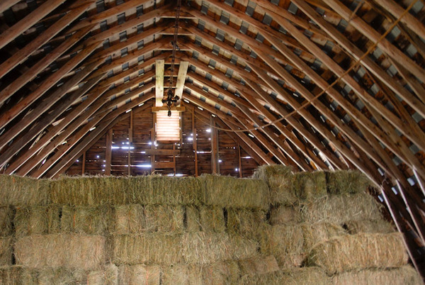 Hay bales stacked in barn
